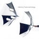 windstorm-umbrella-4